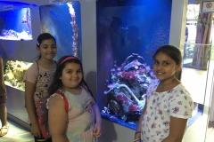 HdM Mädls vor Aquarium