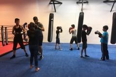 alle Kinder im Boxring