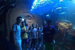 HdM Wassertunnel